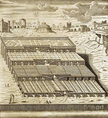 Hanging Gardens Of Babylon, 1679 Artwork Art Print by Asian And Middle Eastern Division