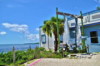 Art Print featuring the photograph Hanging In Matlacha Florida by Timothy Lowry