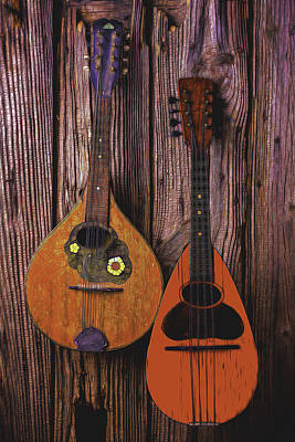 Beaten Up Photograph - Hanging Mandolins by Garry Gay
