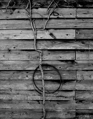 Photograph - Hanging On  by Jeff  Bjune