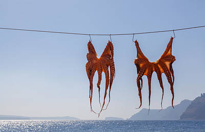 Photograph - Hanging Out To Dry by Brian Grzelewski