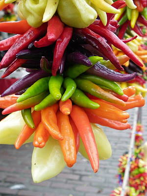 Photograph - Hanging Peppers by Sarah Lamoureux