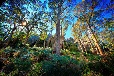 Photograph - Hanging Rock_02 by Tim Nichols