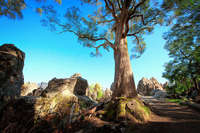 Photograph - Hanging Rock_03 by Tim Nichols