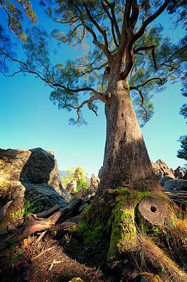 Photograph - Hanging Rock_04 by Tim Nichols