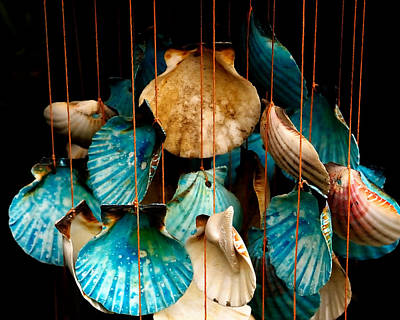 Hanging Together - Sea Shell Wind Chime Art Print by Steven Milner