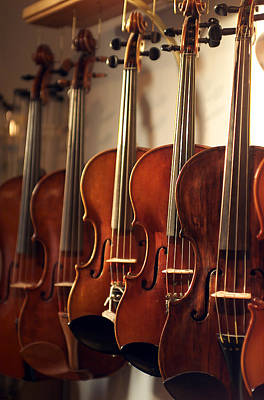 Violin Photograph - Hanging Violins by Jon Neidert