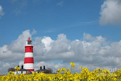 Happisburgh Lighthouse With Oil Seed Rape In Flower Print by Paul Lilley