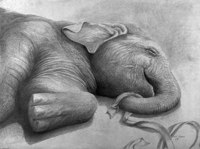 Animals Drawings - Happy Baby by Rick Moore