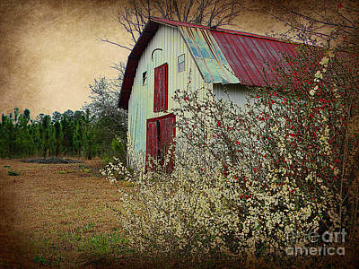 Happy Barn In Spring Art Print by Lorraine Heath