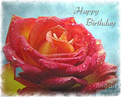 Photograph - Happy Birthday Rose by Debbie Portwood