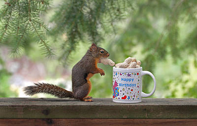 Photograph - Happy Birthday Squirrel by Peggy Collins