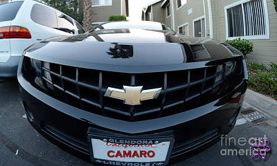 Photograph - Happy Camero by Clayton Bruster