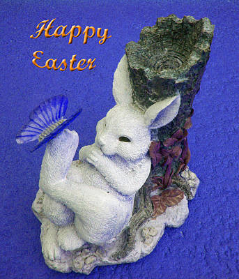 Photograph - Happy Easter Card 3 by Aimee L Maher Photography and Art Visit ALMGallerydotcom