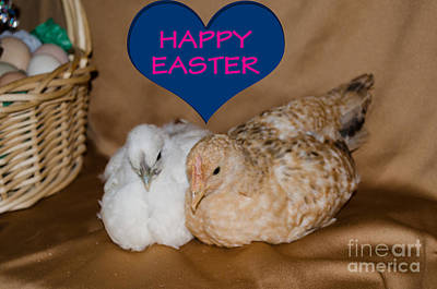 Photograph - Happy Easter by Donna Brown