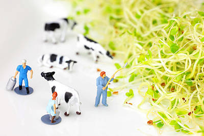 Whimsy Photograph - Happy Farm II Little People On Food by Paul Ge