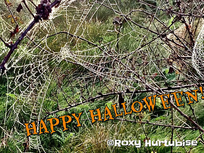 Photograph - Happy Halloween Web by Roxy Hurtubise