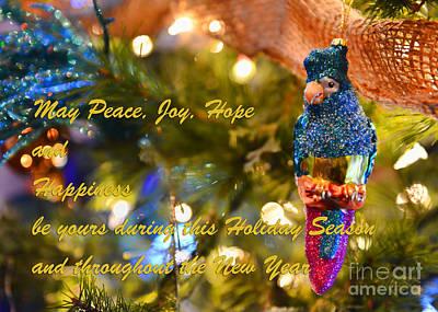 Photograph - Happy Holiday Wishes by Olga Hamilton