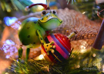 Photograph - Happy Holidays by Olga Hamilton