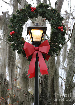 Photograph - Happy Holidays Southern Style by Carol Groenen
