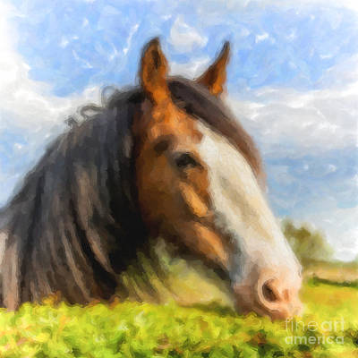 Digital Art - Happy Horse by Liz Leyden