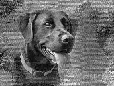 Labrador Retriever Digital Art - Happy Lab by Jayne Carney