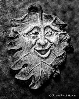 Photograph - Happy Leaf - Bw by Christopher Holmes