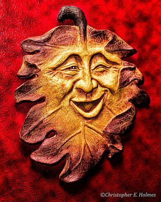 Photograph - Happy Leaf by Christopher Holmes