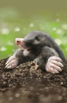 Soil Digital Art - Happy Mole by Arie Van der Wijst