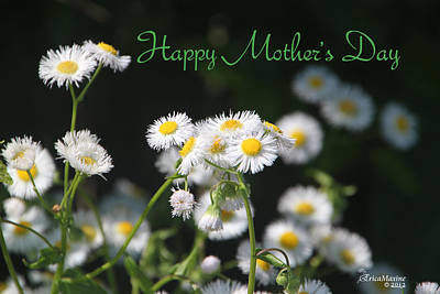 Photograph - Happy Mother's Day 03 by Ericamaxine Price