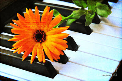 Photograph - Happy Music by Randi Grace Nilsberg