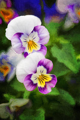 Photograph - Happy Pansy Faces by Mary Jo Allen
