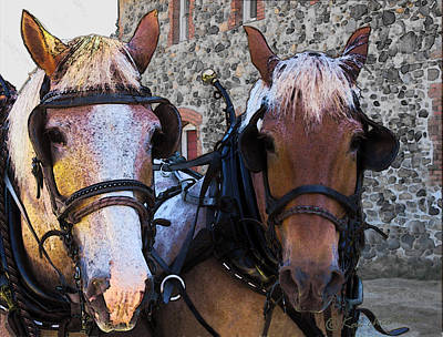 Draft Horses Digital Art - Happy Pullers by Kae Cheatham