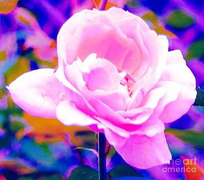 Happy Rose Art Print