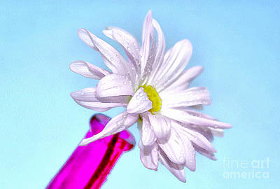 White Flower Photograph - Happy Thoughts by Krissy Katsimbras