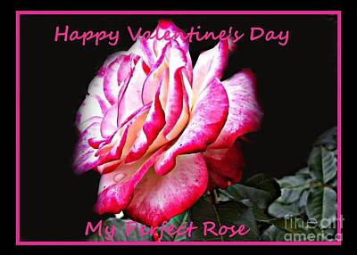Painting - Happy Valentine's Day My Perfect Rose by Shelia Kempf