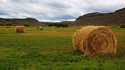 Photograph - Happy Valley Hay Bales by Daniel Woodrum