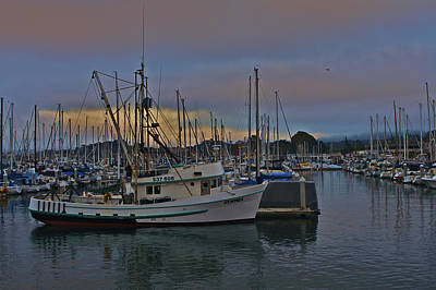 Monterey Photograph - Harbor And Marina Monterey by SC Heffner