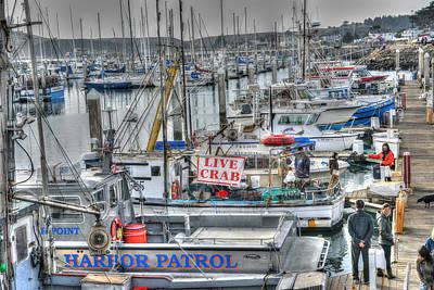 Photograph - Harbor Crab Daze  by Patricia Dennis