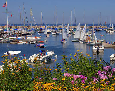 Art Print featuring the photograph Harbor In Bloom by Caroline Stella