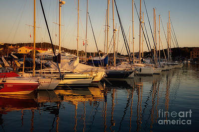 Photograph - Harbor In The Early Evening Light by Nick  Biemans