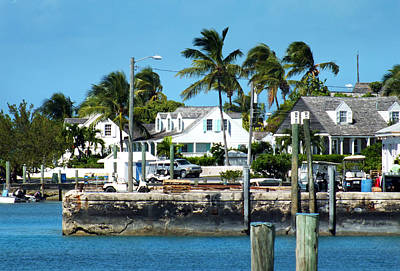 Photograph - Harbour Island Docks And Shoreline 2 by Duane McCullough