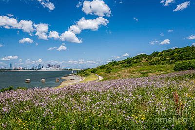 Photograph - Harbor Island Wildflowers by Susan Cole Kelly
