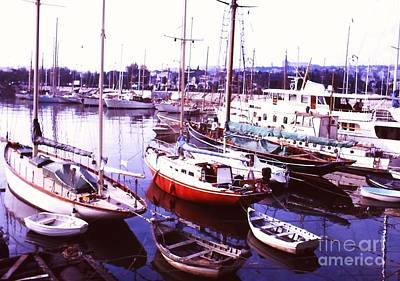 Photograph - Harbor by Pat Knieff
