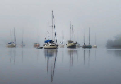 Photograph - Harbor Rest by Deborah Smith
