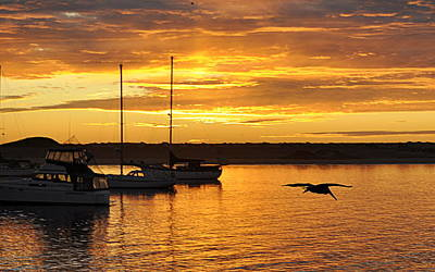 Photograph - Harbor Sunset by AJ  Schibig