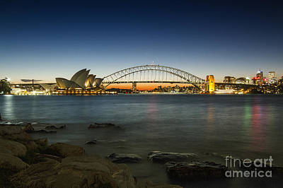 Harbour Night Art Print by Andrew Paranavitana