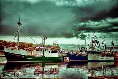 Photograph - Harbourside At Strahan by Wallaroo Images