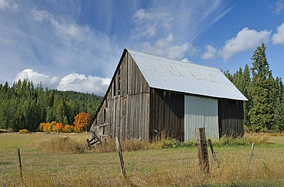 Hardy Creek Road Barn Art Print