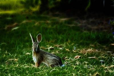 Digital Art - Hare 7268 - F by James Ahn